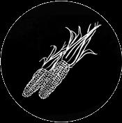 CBheritage-corn