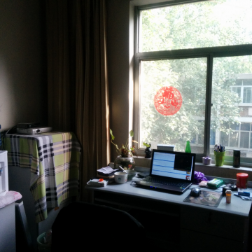A picture of my apartment, my workspace, my safe space.